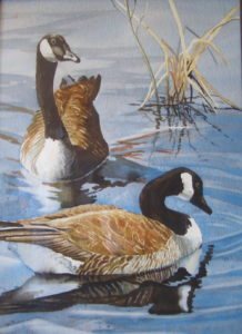 painting of Canada geese