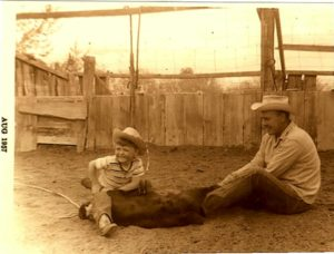 1957 snapshot of a little boy and his dad wrangling a calf