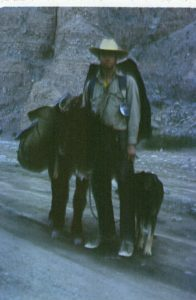 blurry hpoto of a man with a burro and a dog
