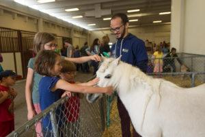 veterinary teaching hospital open house