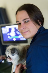 vet student with a pug
