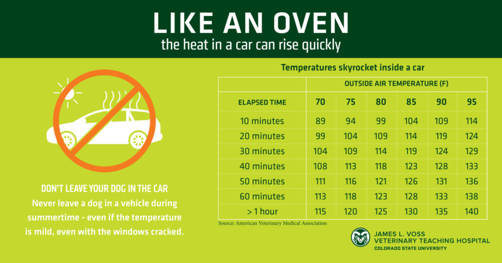 Like an oven hot car graphic