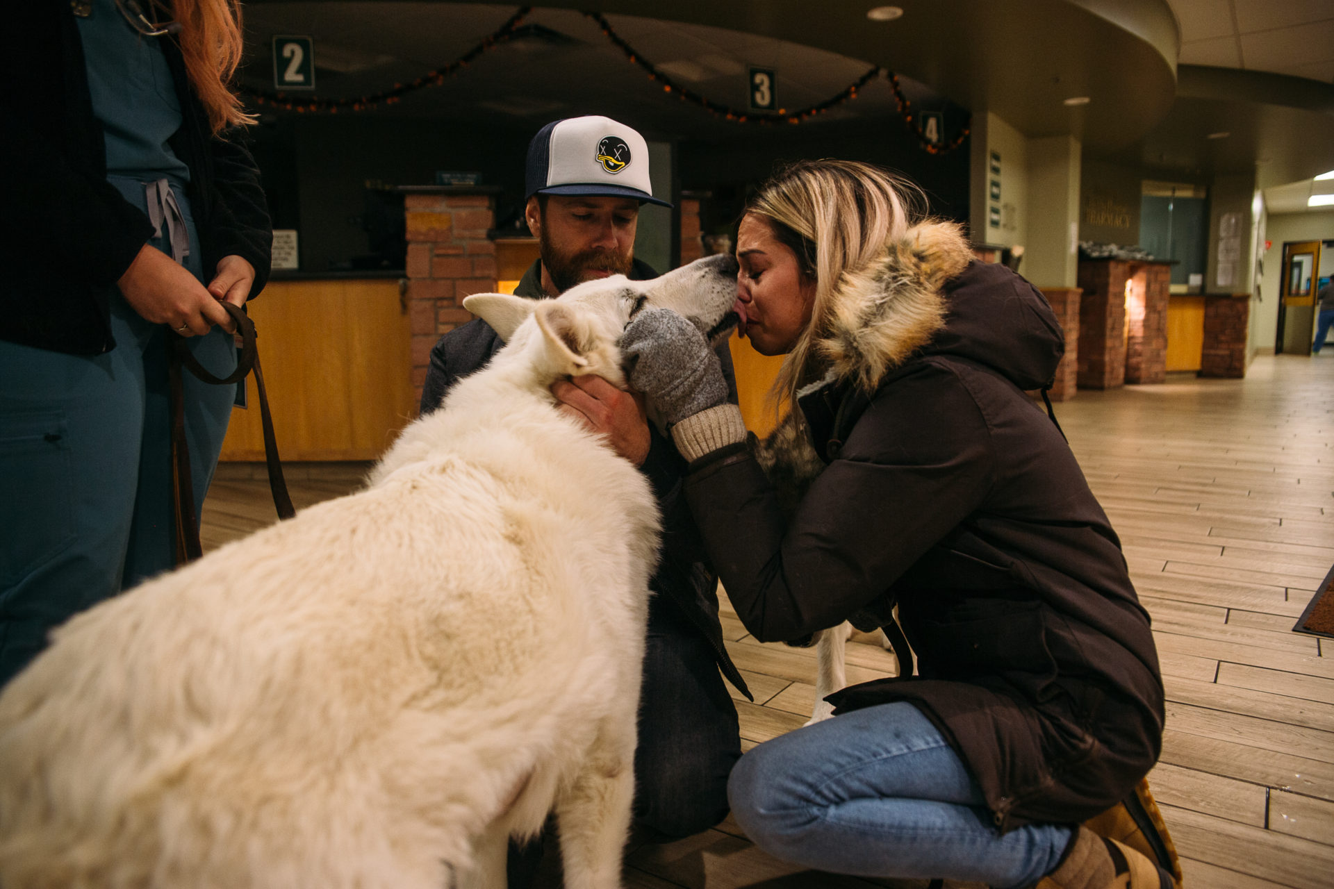 dog kisses owners face