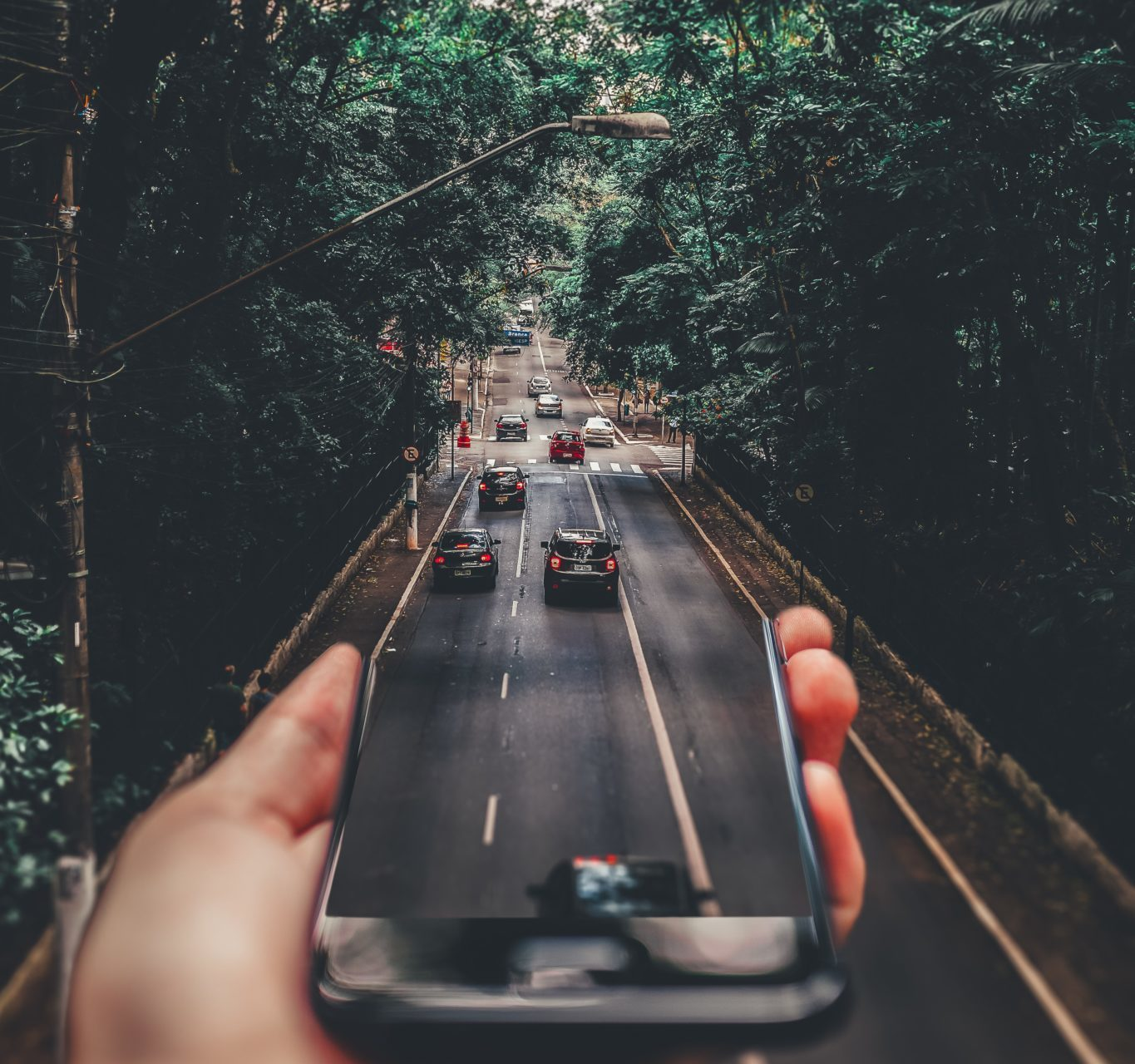cars on a road with trees above, and a cellphone at the foreground