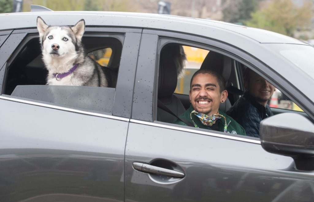 man and dog in a car