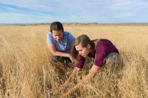 Liba and Kate on the prairie
