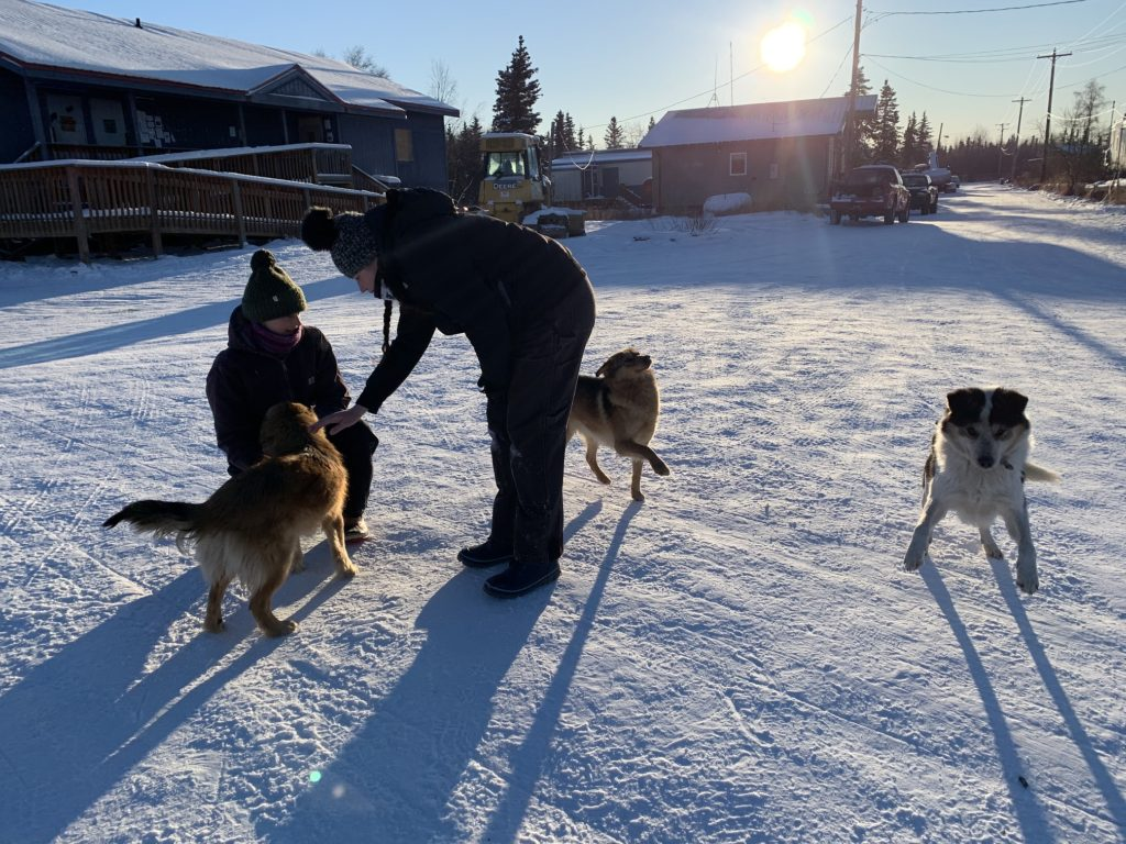 two people with dogs in snow