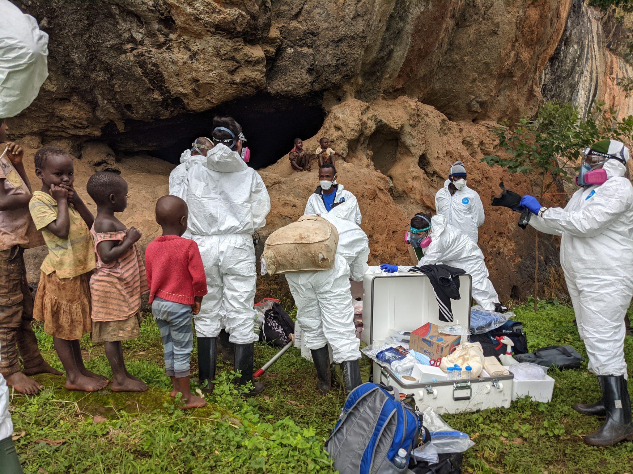 bat research at Mt. Elgon cave
